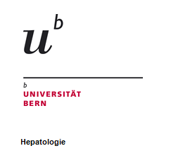 27.02.2017 – Scientific hepatology presentation